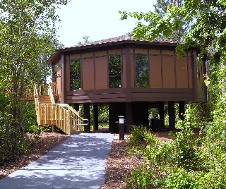 Disney Saratoga Springs Treehouse Villa Reviews