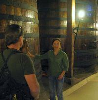 Bisquertt Wine tour Colchagua Valley Chile