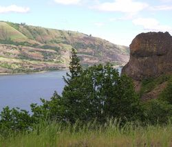 Columbia River Gorge view from the trail east of Hood River, Ofregon (Photo by David G. Molyneaux, TheTravelMavens.com)