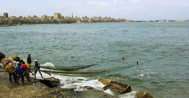 Netting fish in downtown Alexandria, Egypt (Photo by David G. Molyneaux, TheTravelMavens.com)