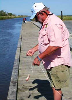 Captain Sammie Faulk, hunting crab with a string and a chicken neck (Photo by David G. Molyneaux, TheTravelMavens.com)