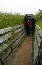 Trench for visitors at Penguin Place on Otago Peninsula, New Zealand (Photo by David G. Molyneaux, TheTravelMavens.com)