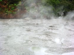 Mud burping in Rotorua, New Zealand (photo by David G. Molyneaux, TheTravelMavens.com)