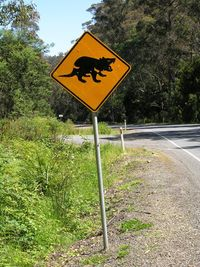A road sign warning motorists to watch out for Tasmania Devils (Photo by David G. Molyneaux, TheTravelMavens.com)
