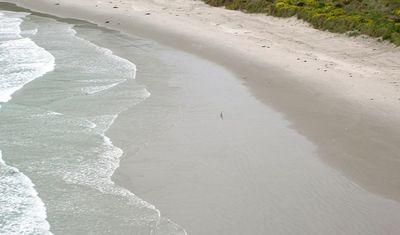 Beach at Penguin Place on Otago Peninsula, near Dunedin, New Zealand (Photo by David G. Molyneaux, TheTravelMavens.com)
