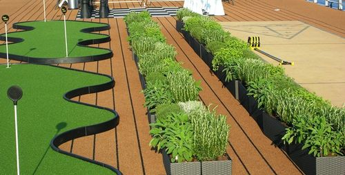Between the putting greens and shuffleboard court on the top deck, new Viking River Cruises boats carry an herb garden. (Photo by David G. Molyneaux, TheTravelMavens.com)