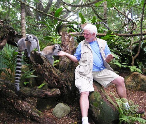 David Molyneaux feeding the lemurs at Cairns Tropical Zoo