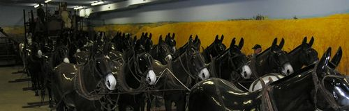 How a mule train looked (Photo by David G. Molyneaux, TheTravelMavens.com)