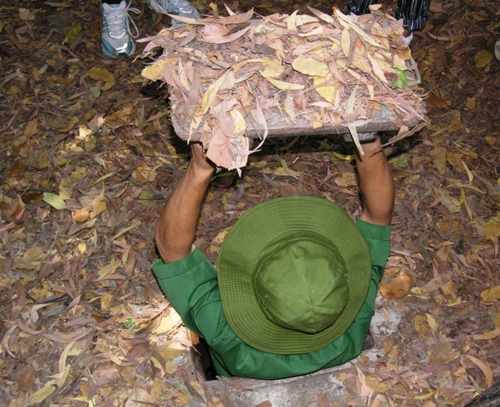 One of many entrances to the Cu Chi tunnels of Vietnam (Photo by David G. Molyneaux, TheTravelMavens.com)