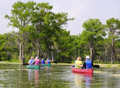 Canoeing in Atchafalaya Basin, Louisiana (Photo by David G. Molyneaux, TheTravelMavens.com)