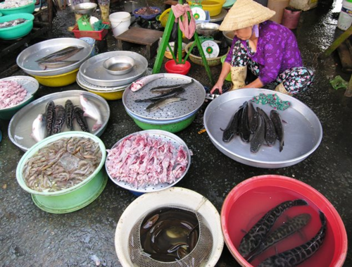 For sale at market in Vietnam (Photo by David G. Molyneaux, TheTravelMavens.com)