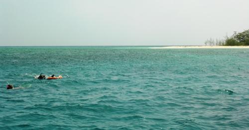 Snorkeling at North Direction Island, Great Barrier Reef, Australia (Photo by David G. Molyneaux, TheTravelMavens.com)