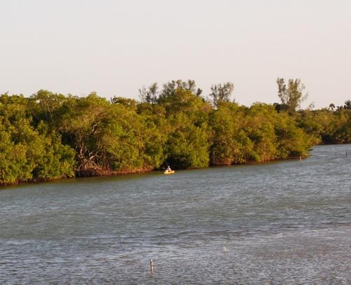 Kayaking in the mangroves of Naples Fla. near the Naples Grande Beach Resort (Photo by David G. Molyneaux, TheTravelMavens.com)