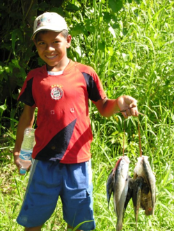 A boy in Urarina, Peru, said he speared these fish in the waters of the Upper Amazon (Photo by David G. Molyneaux, TheTravelMavens.com)