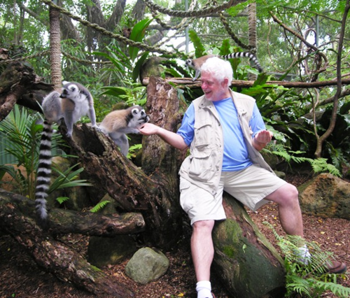 Feeding the lemurs at Cairns Tropical Zoo (Photo by David G. Molyneaux, TheTravelMavens.com)