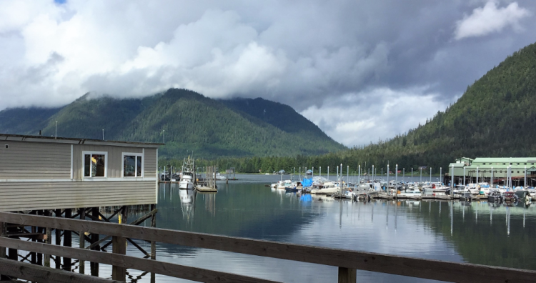 The quiet harbor at Petersburg, Alaska (Photo by David G. Molyneaux, TheTravelMavens.com)