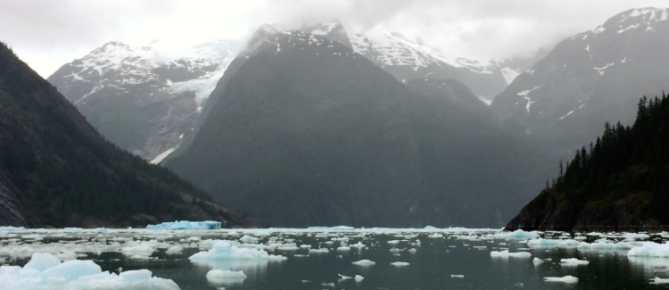 A 28-foot outboard motor boat encounters icebergs at the opening of LeConte Bay, 12 miles from the LeConte Glacier (Photo by David G. Molyneaux, TheTravelMavens.com)