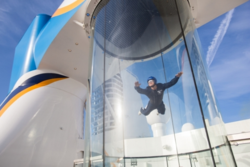 Sky diving on Quantum of the Seas