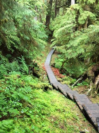 The half-mile boardwalk trail to Anan Observatory in Alaska has 307 steps (Photo by David G. Molyneaux, TheTravelMavens.com)